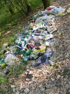 Müll sammeln im Kranichsteiner Wald @ Ecke Kranichsteiner Straße / Pfannmüllerweg